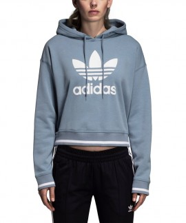 DH2943 ADIDAS ACTIVE ICONS HOODIE