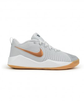 AT5298-006 NIKE TEAM HUSTLE QUICK 2 (GS)