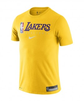 AT0688-741 NIKE LOS ANGELES LAKERS
